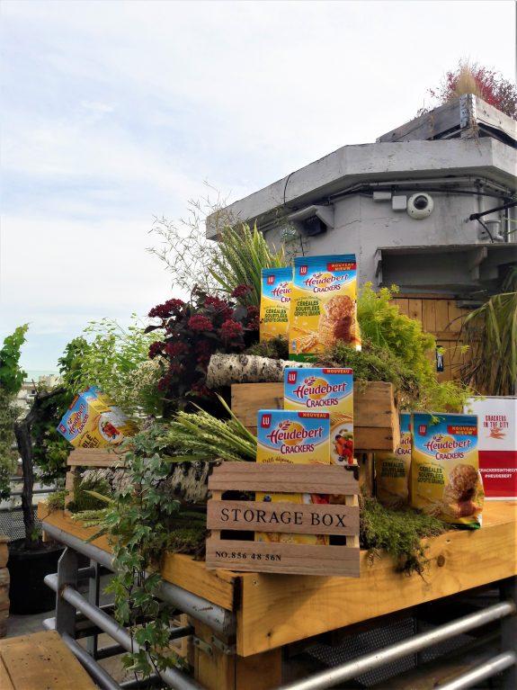 fleuriste paris, végétalisation, scénographie, fleurs, christian morel, événement, rooftop