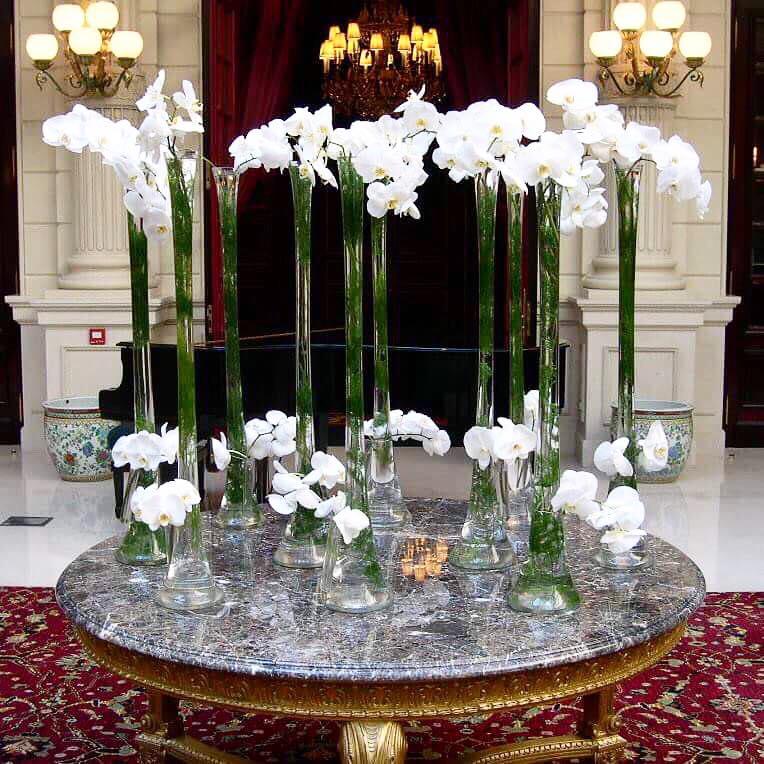Christian Morel Fleuriste Paris Hotel Orchidées