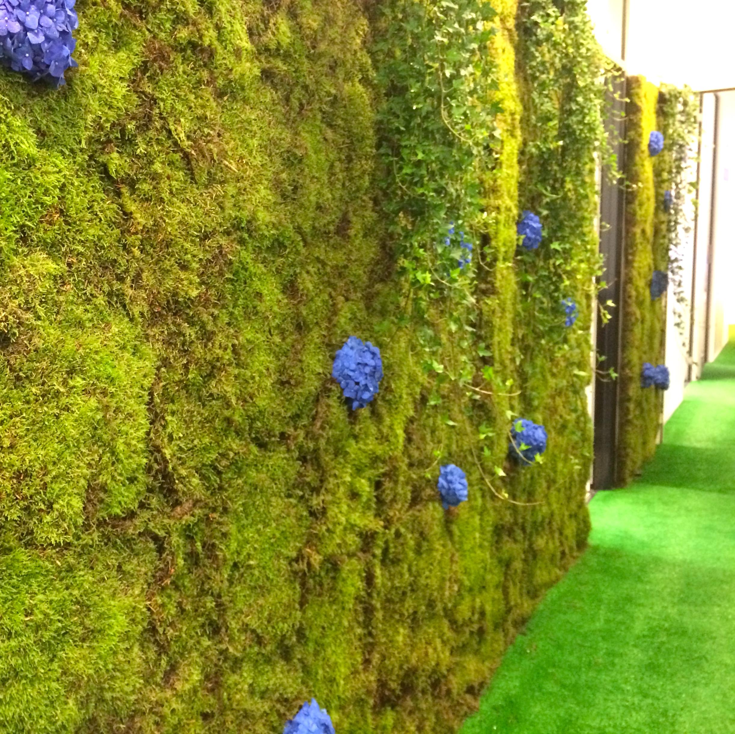 Christian Morel Fleuriste Paris - Evenement mur vegetal