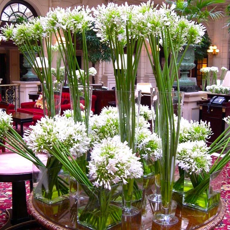 Christian Morel Fleuriste Paris Hotel Composition
