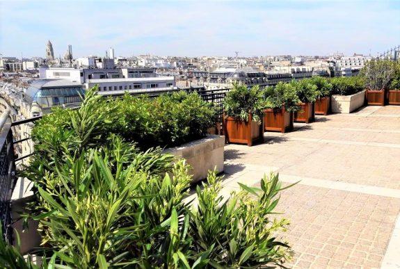 fleuriste paris fleuriste parisien rorftop paris champs élysées fleurs et plantes décorations terrasse tour eiffel
