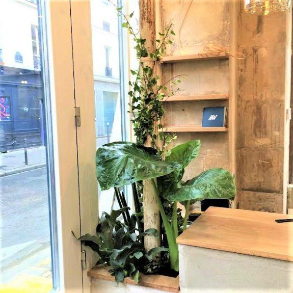 fleuriste paris fleurs paris créations florales scénographie plantes lierres ambiance coiffeur paris 11